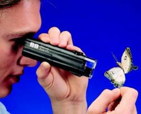 Scientifics® Illuminated 30X Pocket Microscope Replacement Bulbs (2 pk)