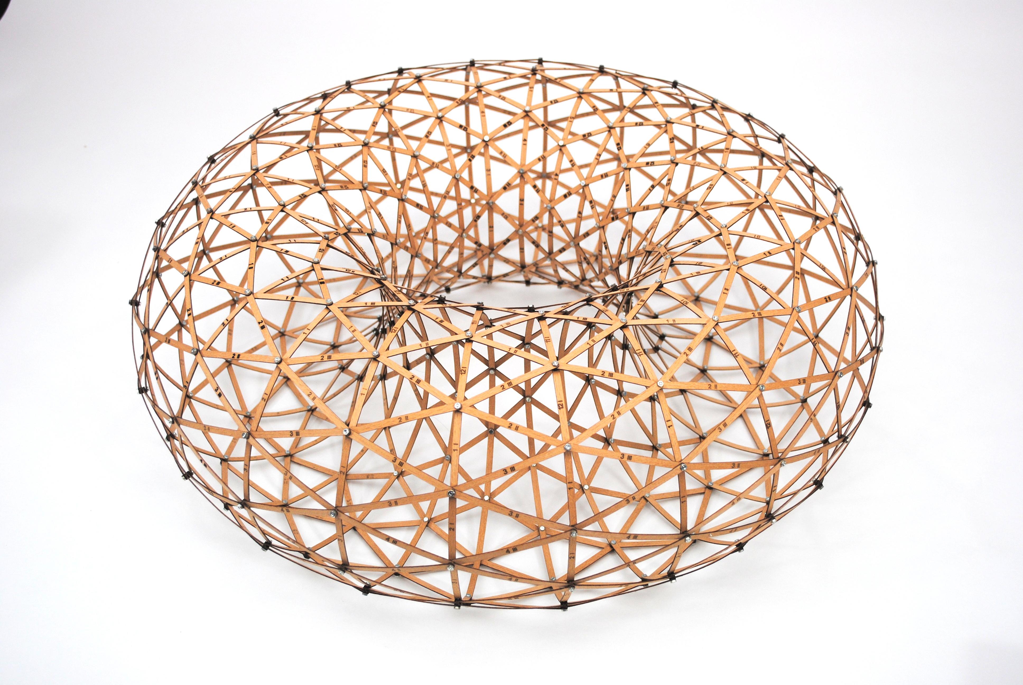 Torus - Wooden Construction Kit - ScientificsOnline com