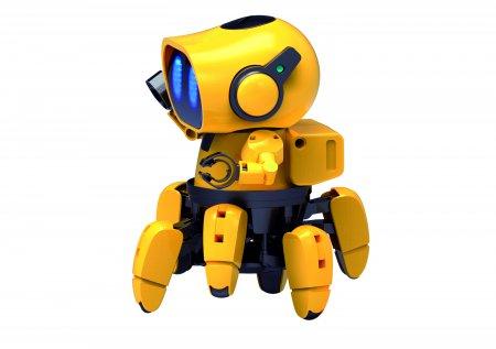 KIKO.893 Artificial Intelligence Robot Kit