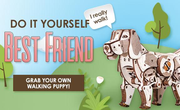 Build Your Own Best Friend