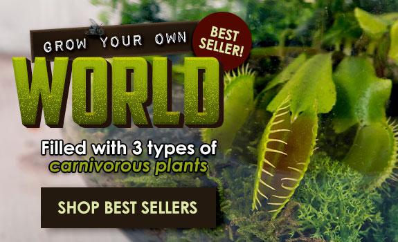 Scientifics Direct Best Sellers