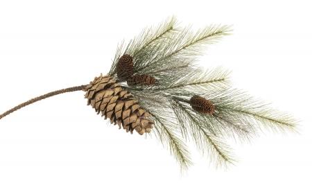 """35"""" Pine Christmas Pine Cone Spray"""