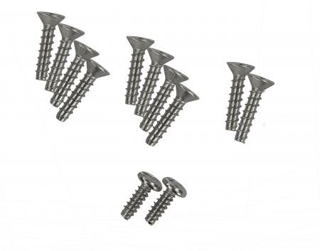 Hayward 1090 screws (10)